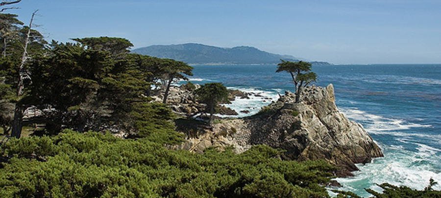 Un des points de vue de la Monterey Peninsula Recreational Trail