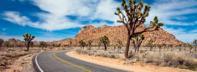La route entre Palm Springs et le Grand Canyon (crédit : http://www.eaglerider.com)