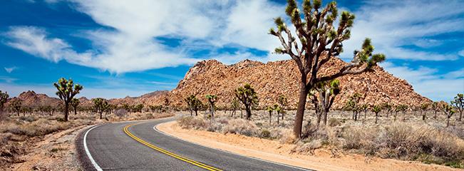 La route entre Palm Springs et le Grand Canyon (crédit : http://www.eaglerider.com)